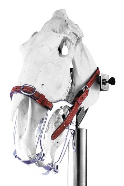Espéculo para equinos WorldWide Equine / Series 2020